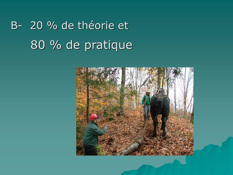 B- 20 % de théorie et 80 % de pratique