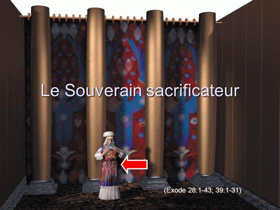 Le Souverain sacrificateur (Exode 28:1-43; 39:1-31)