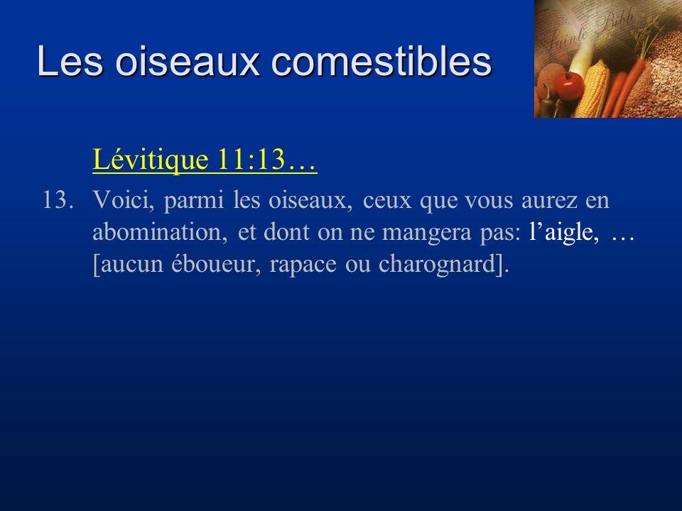 Les oiseaux comestibles Lévitique 11:13… 13.Voici, parmi les oiseaux, ceux que vous aurez en abomination, et dont on ne mangera pas: laigle, … [aucun