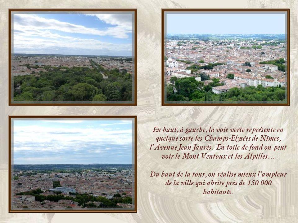 Les Arènes de Nîmes vues de lEsplanade.