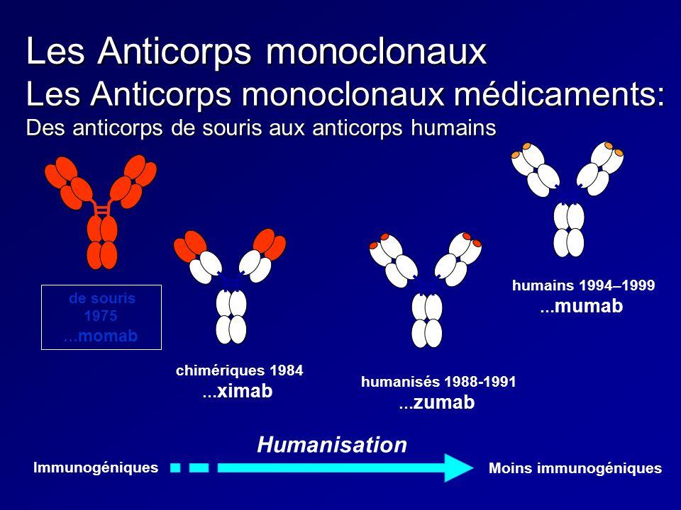 Les Anticorps monoclonaux Les Anticorps monoclonaux médicaments: Des anticorps de souris aux anticorps humains de souris 1975 … momab chimériques 1984
