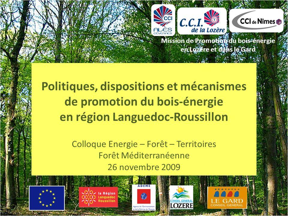 Politiques, dispositions et mécanismes de promotion du bois-énergie en région Languedoc-Roussillon Mission de Promotion du bois-énergie en Lozère et dans le Gard Colloque Energie – Forêt – Territoires Forêt Méditerranéenne 26 novembre 2009