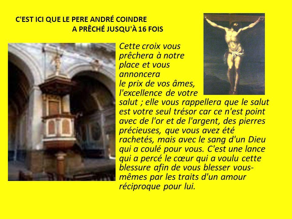 Cette croix vous prêchera à notre place et vous annoncera le prix de vos âmes, l'excellence de votre salut ; elle vous rappellera que le salut est vot