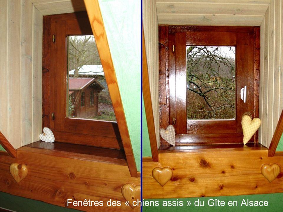 Fenêtres des « chiens assis » du Gîte en Alsace