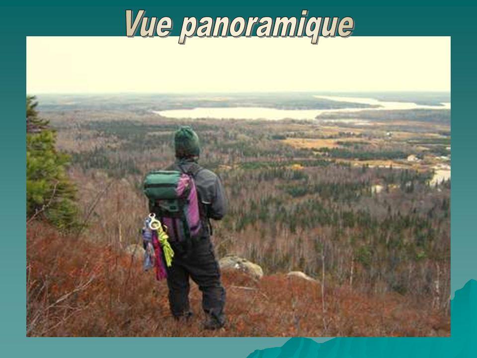 L'Abitibi, là où les histoires de pêches du lac Témiscamingue, sont aussi vraies que le monde qui y vit. Là où les feux de camp de Rouyn, Amos et de V
