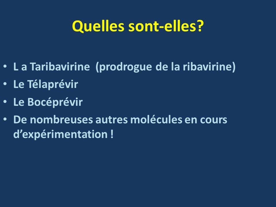 Quelles sont-elles? L a Taribavirine (prodrogue de la ribavirine) Le Télaprévir Le Bocéprévir De nombreuses autres molécules en cours dexpérimentation