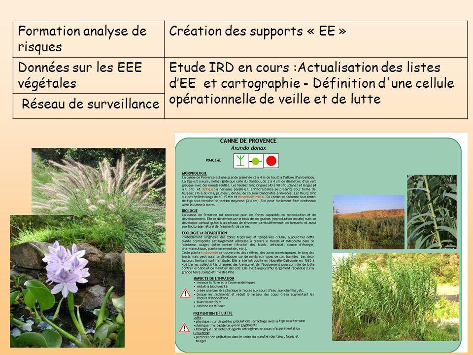 Formation analyse de risques Création des supports « EE » Données sur les EEE végétales Etude IRD en cours :Actualisation des listes dEE et cartograph