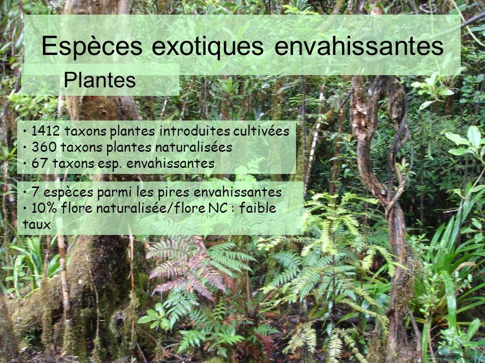 Espèces exotiques envahissantes Plantes 1412 taxons plantes introduites cultivées 360 taxons plantes naturalisées 67 taxons esp. envahissantes 7 espèc