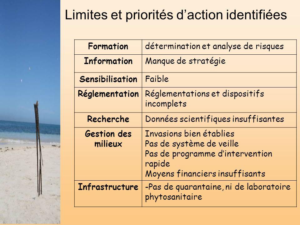 Limites et priorités daction identifiées Formationdétermination et analyse de risques InformationManque de stratégie SensibilisationFaible Réglementat