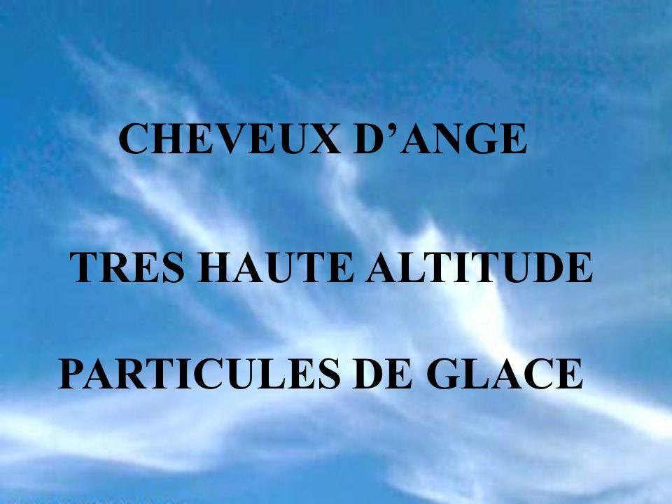 CHEVEUX DANGE TRES HAUTE ALTITUDE PARTICULES DE GLACE