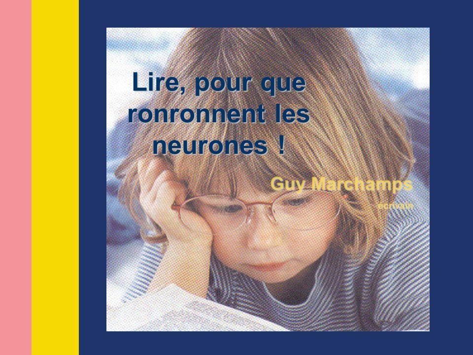 Guy Marchamps écrivain Lire, pour que ronronnent les neurones !