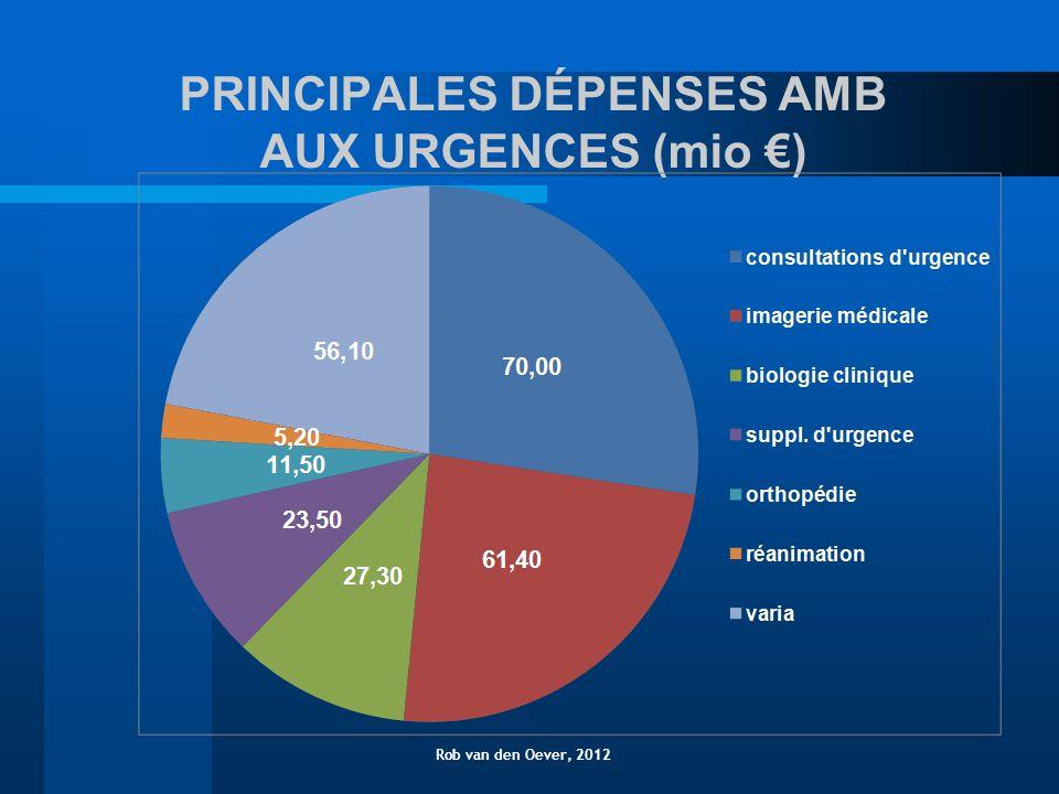 PRINCIPALES DÉPENSES AMB AUX URGENCES (mio ) Rob van den Oever, 2012