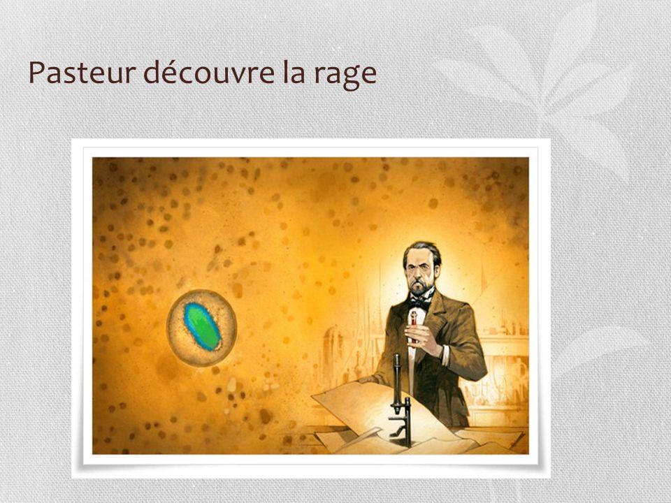 Pasteur découvre la rage