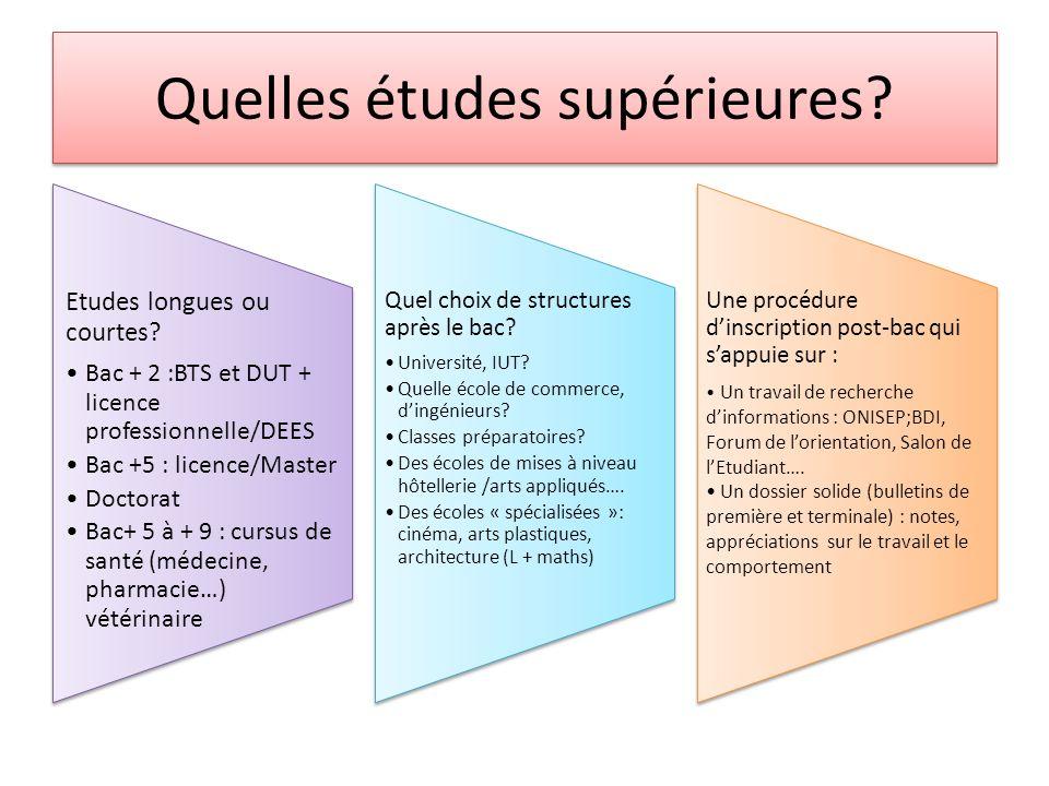 Quelles études supérieures? Etudes longues ou courtes? Bac + 2 :BTS et DUT + licence professionnelle/DEES Bac +5 : licence/Master Doctorat Bac+ 5 à +