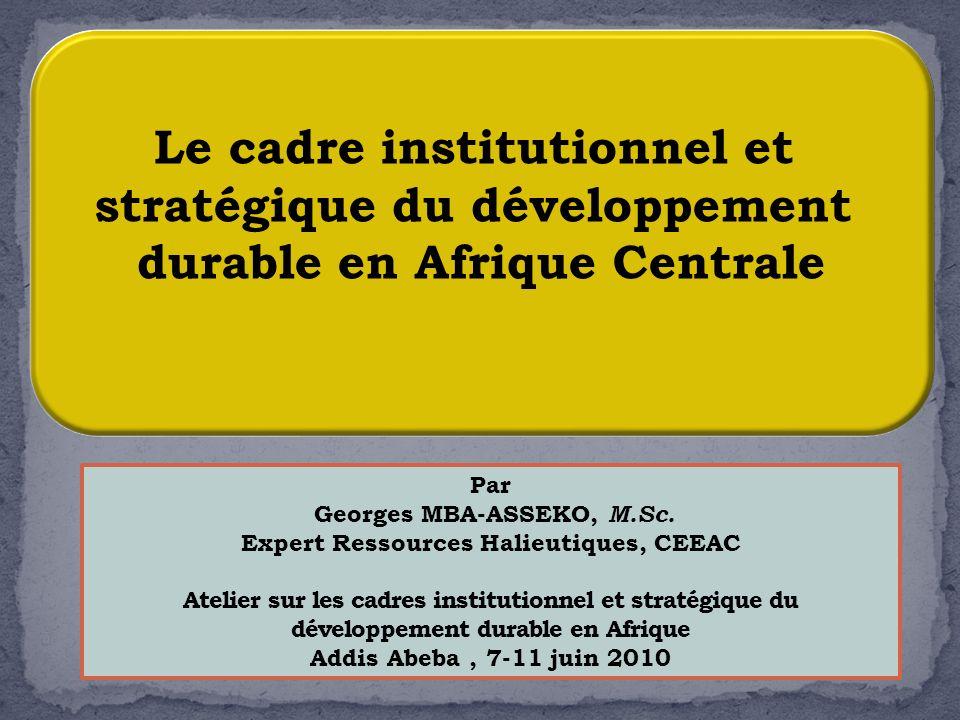 1 Le cadre institutionnel et stratégique du développement durable en Afrique Centrale Par Georges MBA-ASSEKO, M.Sc. Expert Ressources Halieutiques, CE