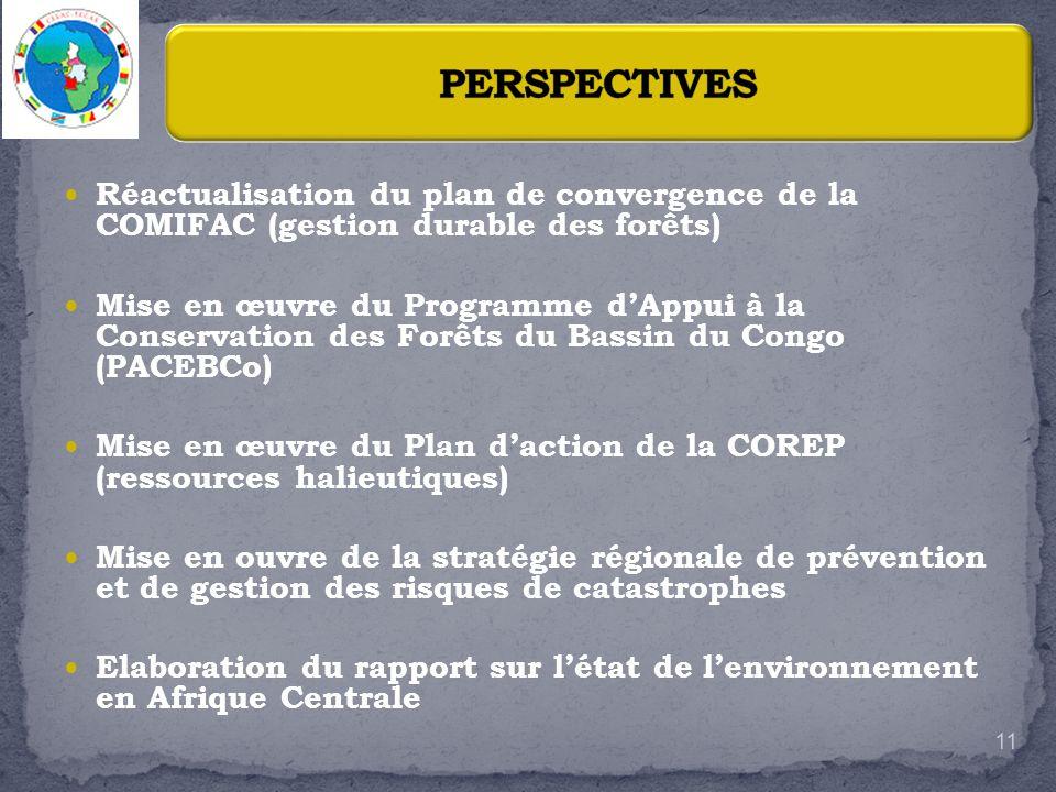 Réactualisation du plan de convergence de la COMIFAC (gestion durable des forêts) Mise en œuvre du Programme dAppui à la Conservation des Forêts du Ba