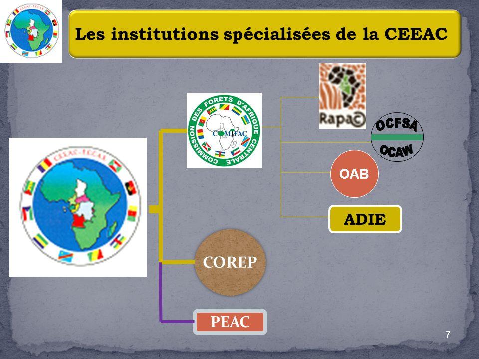 Collecte dinformations pour lélaboration de stratégies sectorielles (Forêts, pêches, biodiversité, changement climatique et risques de catastrophes, etc.) Appui à la mise en œuvre de projets/programmes dont les plus importants sont le PACEBCo (CEEAC/BAD), ECOFAC V (CEEAC/UE), Relance de la COREP 8