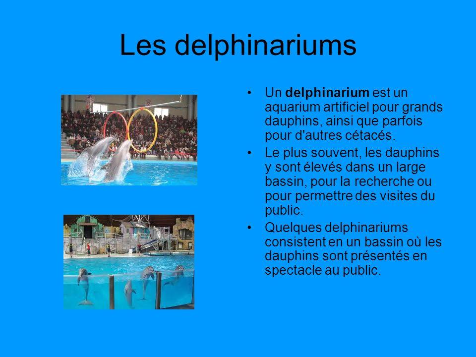 Les delphinariums Un delphinarium est un aquarium artificiel pour grands dauphins, ainsi que parfois pour d'autres cétacés. Le plus souvent, les dauph