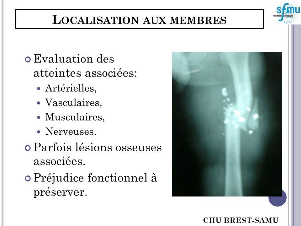 L OCALISATION AUX MEMBRES Evaluation des atteintes associées: Artérielles, Vasculaires, Musculaires, Nerveuses. Parfois lésions osseuses associées. Pr