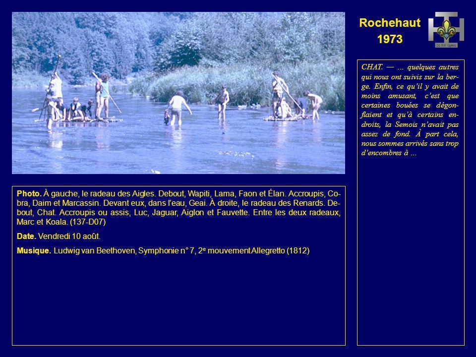 Rochehaut 1973 Photo. À gauche, le radeau des Renards. Debout, Aiglon et Chat. Accroupis ou assis, Lion- ceau, Koala, Jaguar, Geai et Luc. À droite, M
