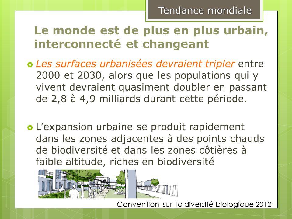 Le monde est de plus en plus urbain, interconnecté et changeant Les surfaces urbanisées devraient tripler entre 2000 et 2030, alors que les population