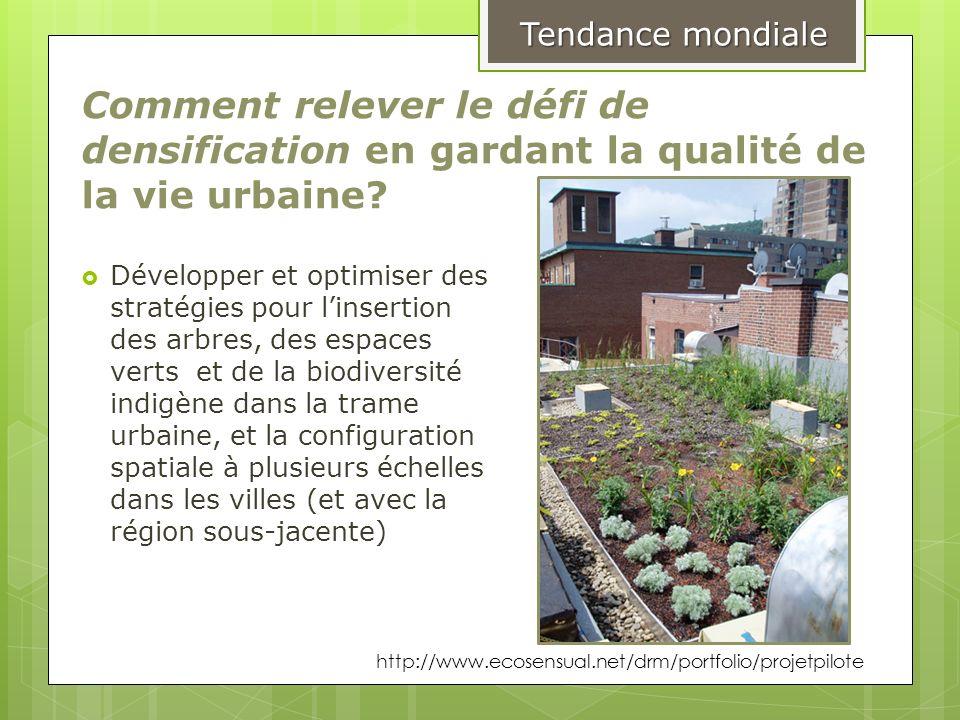 Comment relever le défi de densification en gardant la qualité de la vie urbaine? Développer et optimiser des stratégies pour linsertion des arbres, d