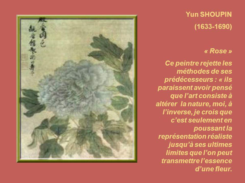 Yun SHOUPIN (1633-1690) « Rose » Ce peintre rejette les méthodes de ses prédécesseurs : « ils paraissent avoir pensé que lart consiste à altérer la nature, moi, à linverse, je crois que cest seulement en poussant la représentation réaliste jusquà ses ultimes limites que lon peut transmettre lessence dune fleur.
