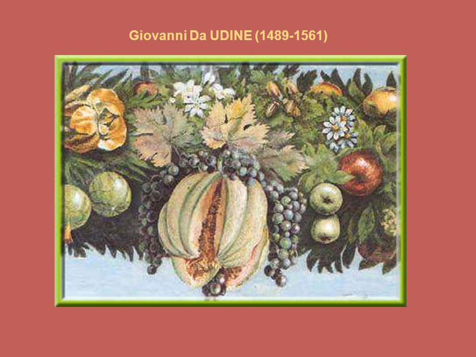 Giovanni Da UDINE (1489-1561)