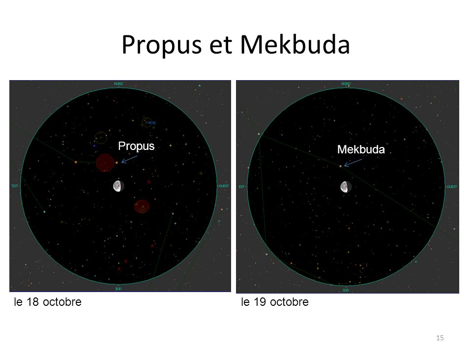 Propus et Mekbuda 15 le 18 octobrele 19 octobre Propus Mekbuda