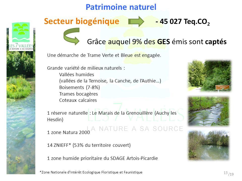 Patrimoine naturel Grâce auquel 9% des GES émis sont captés Secteur biogénique - 45 027 Teq.CO 2 *Zone Nationale dIntérêt Ecologique Floristique et Faunistique Une démarche de Trame Verte et Bleue est engagée.