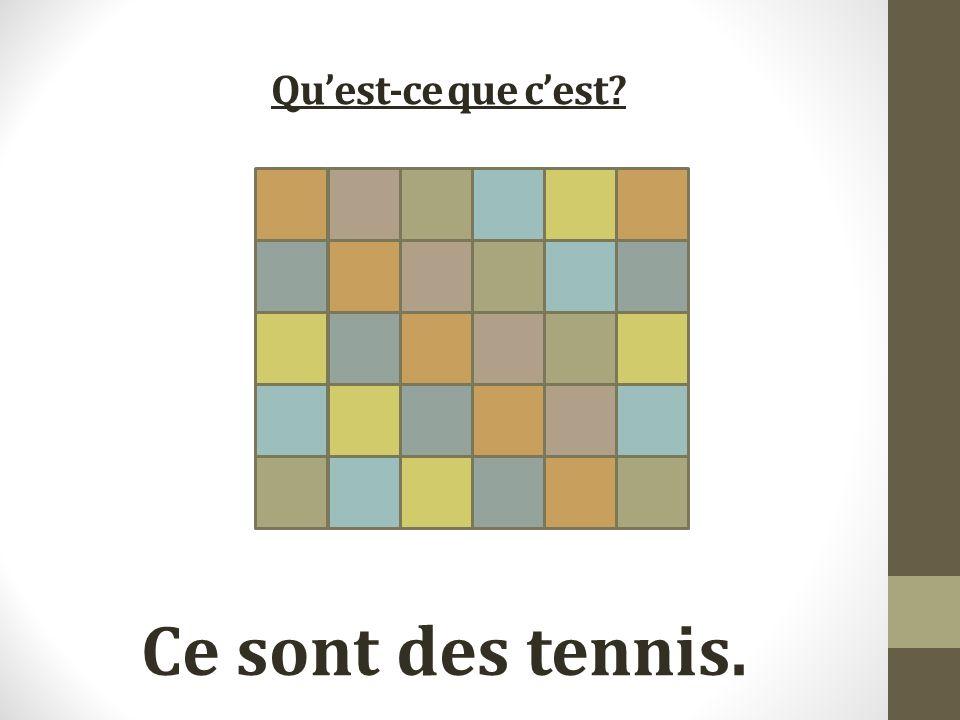 Quest-ce que cest Ce sont des tennis.