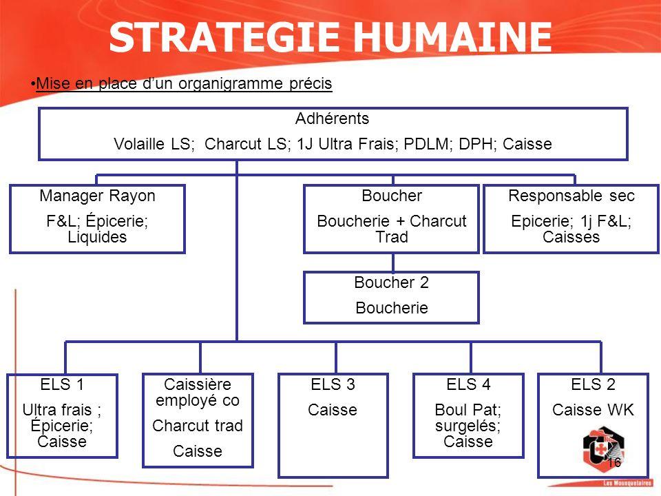 16 STRATEGIE HUMAINE Mise en place dun organigramme précis Adhérents Volaille LS; Charcut LS; 1J Ultra Frais; PDLM; DPH; Caisse Manager Rayon F&L; Épi