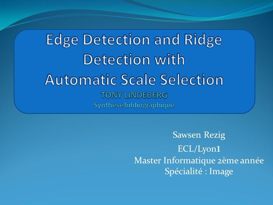 Sawsen Rezig ECL/Lyon 1 Master Informatique 2ème année Spécialité : Image