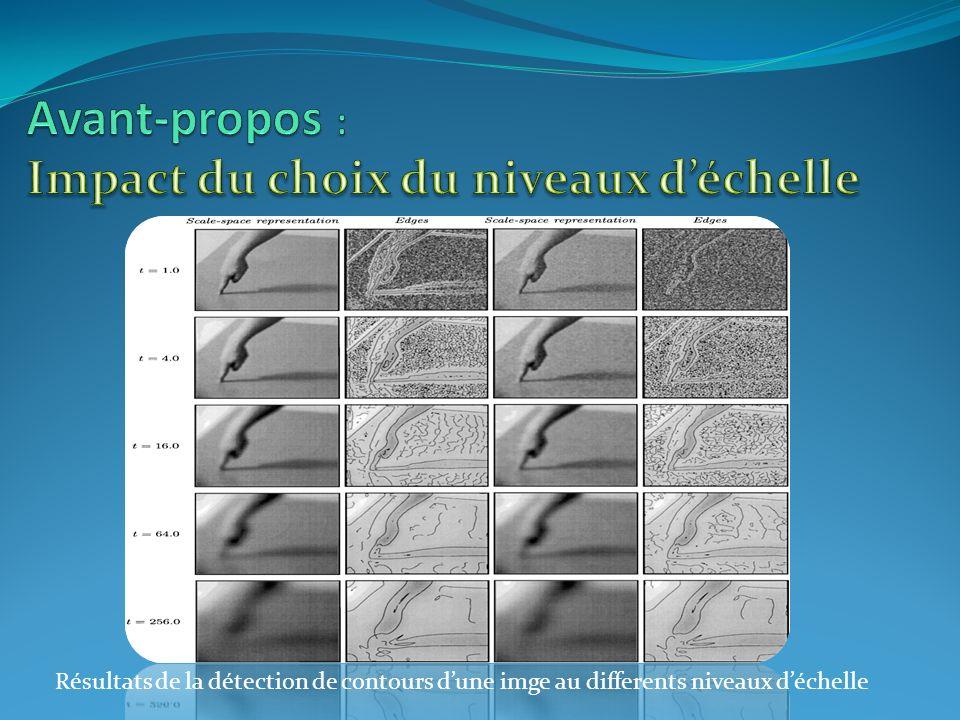 Résultats de la détection de contours dune imge au differents niveaux déchelle