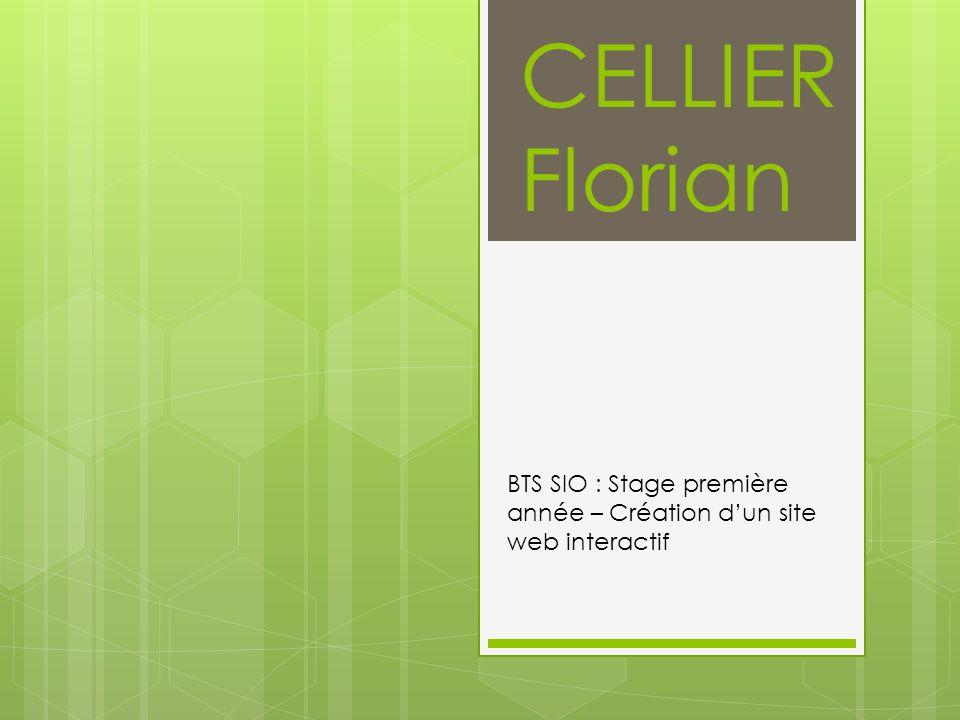 CELLIER Florian BTS SIO : Stage première année – Création dun site web interactif
