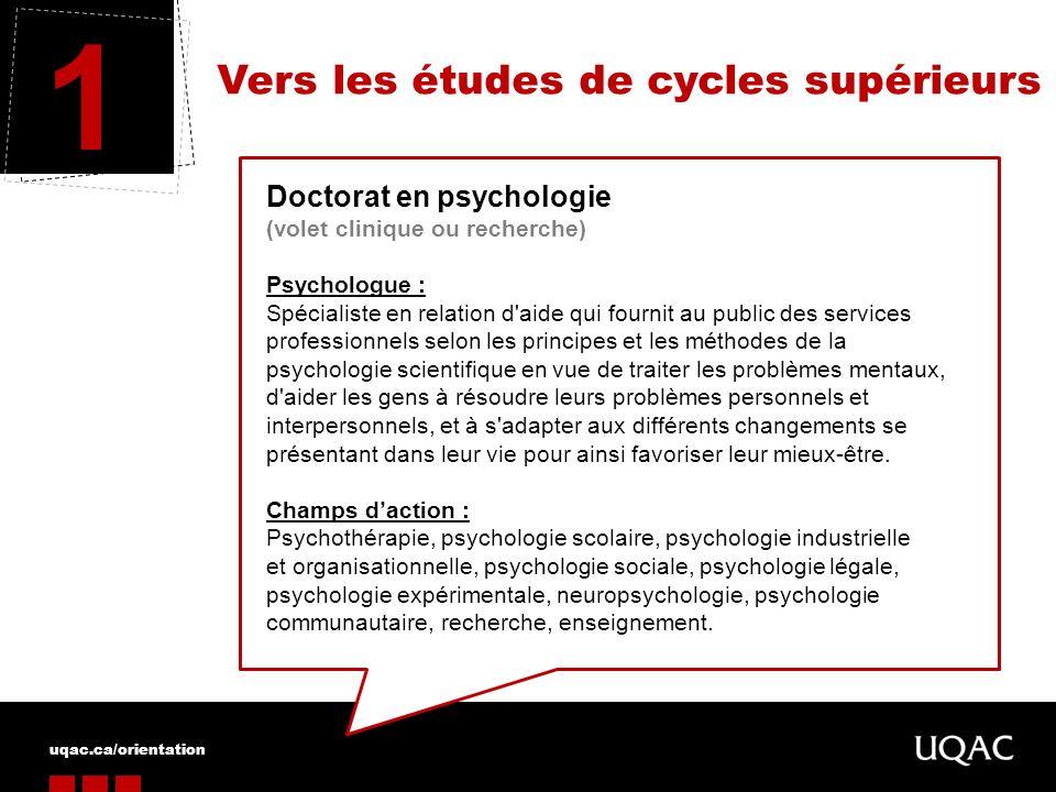 Vers les études de cycles supérieurs 1 Doctorat en psychologie (volet clinique ou recherche) Psychologue : Spécialiste en relation d'aide qui fournit