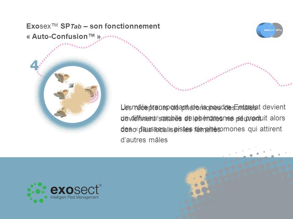 Les récepteurs de phéromones des mâles deviennent saturés et les mâles ne peuvent donc plus localiser les femelles Exosex SP Tab – son fonctionnement