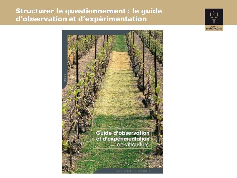 Structurer le questionnement : le guide dobservation et dexpérimentation
