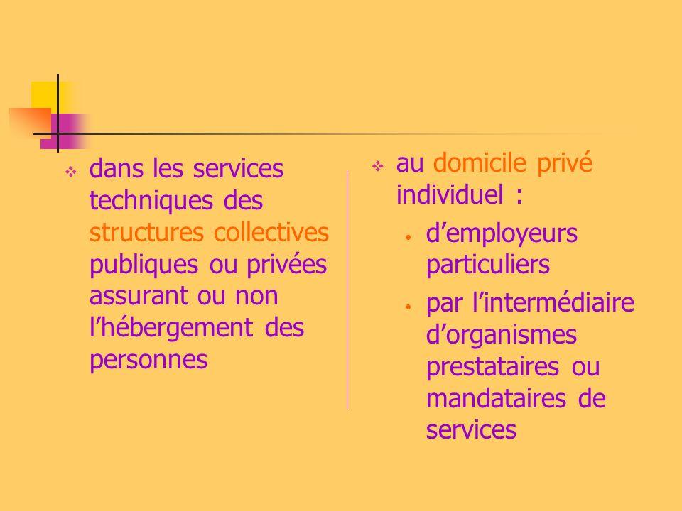 dans les services techniques des structures collectives publiques ou privées assurant ou non lhébergement des personnes au domicile privé individuel :