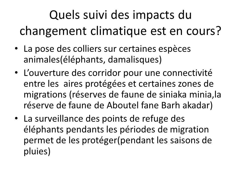 Quels suivi des impacts du changement climatique est en cours? La pose des colliers sur certaines espèces animales(éléphants, damalisques) Louverture