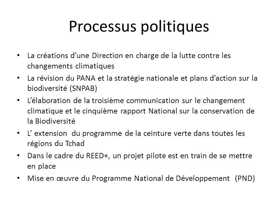 Processus politiques La créations dune Direction en charge de la lutte contre les changements climatiques La révision du PANA et la stratégie national