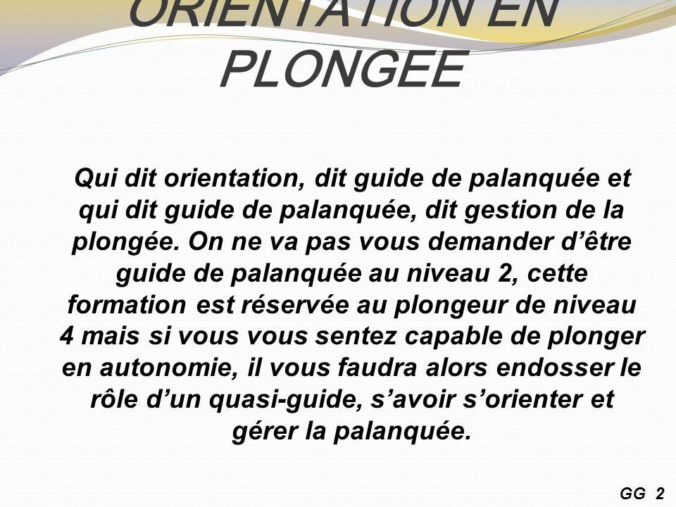 ORIENTATION EN PLONGEE Qui dit orientation, dit guide de palanquée et qui dit guide de palanquée, dit gestion de la plongée.