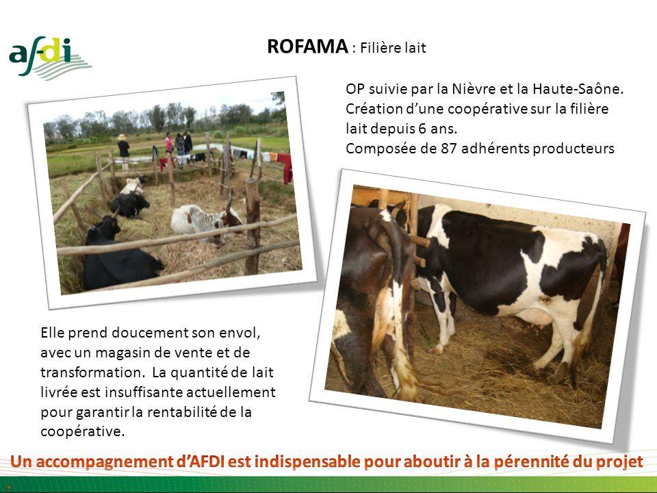 ROFAMA : Filière lait OP suivie par la Nièvre et la Haute-Saône. Création dune coopérative sur la filière lait depuis 6 ans. Composée de 87 adhérents