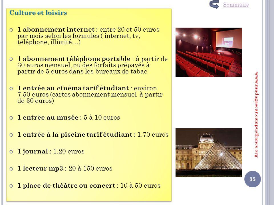 Culture et loisirs 1 abonnement internet : entre 20 et 50 euros par mois selon les formules ( internet, tv, téléphone, illimité…) 1 abonnement télépho