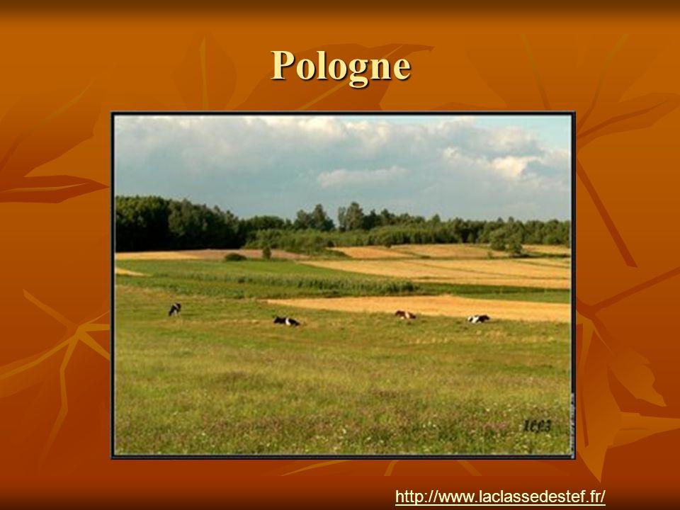 Pologne http://www.laclassedestef.fr/ http://www.laclassedestef.fr/ Auteur : Nathalie