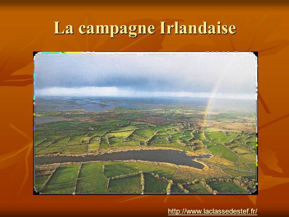 La campagne Irlandaise http://www.laclassedestef.fr/ http://www.laclassedestef.fr/ Auteur : Nathalie