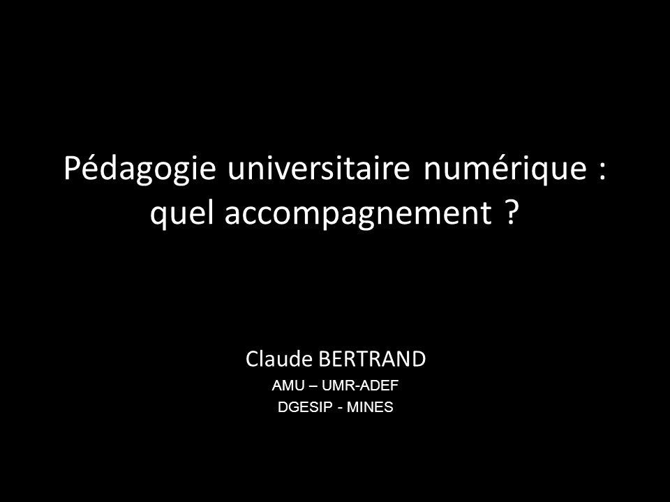 Pédagogie universitaire numérique : quel accompagnement .
