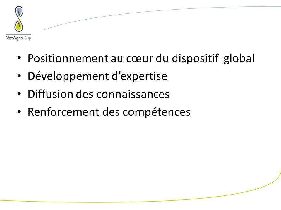Positionnement au cœur du dispositif global Développement dexpertise Diffusion des connaissances Renforcement des compétences