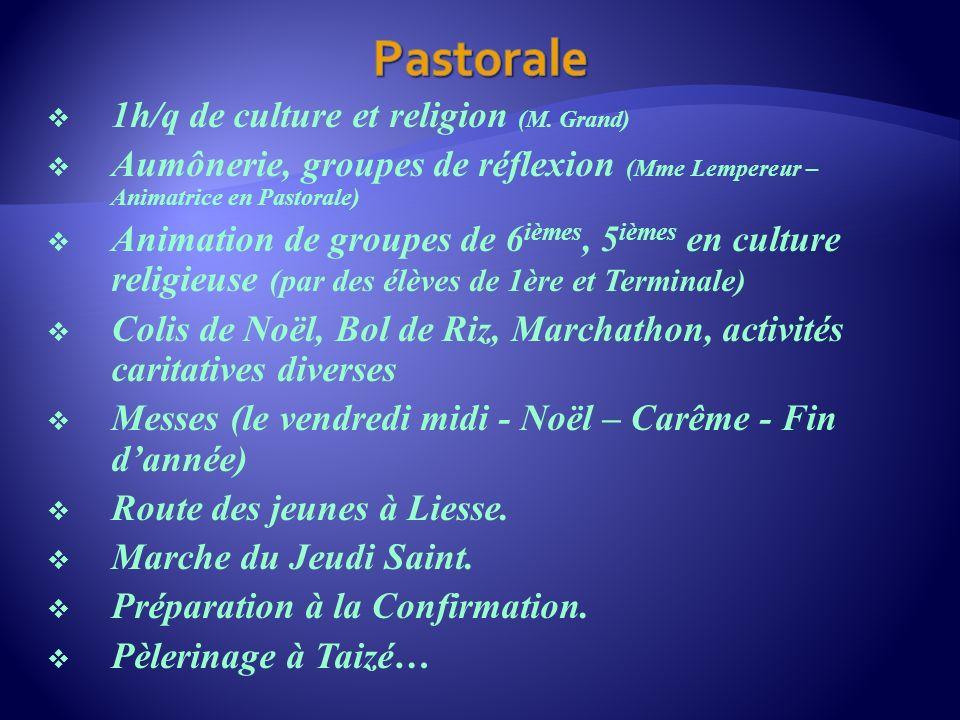 1h/q de culture et religion (M. Grand) Aumônerie, groupes de réflexion (Mme Lempereur – Animatrice en Pastorale) Animation de groupes de 6 ièmes, 5 iè