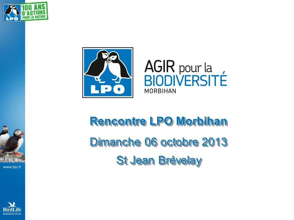 Rencontre LPO Morbihan Dimanche 06 octobre 2013 St Jean Brévelay Rencontre LPO Morbihan Dimanche 06 octobre 2013 St Jean Brévelay